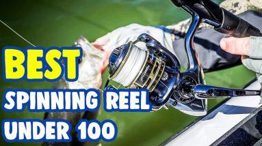 Best Spinning Reels Under $100 In 2021 [ Top Models Reviewed! ]