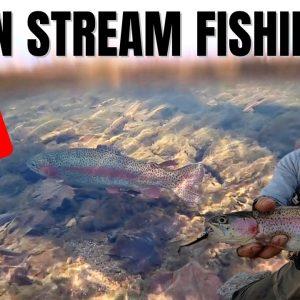 URBAN STREAM FISHING!!